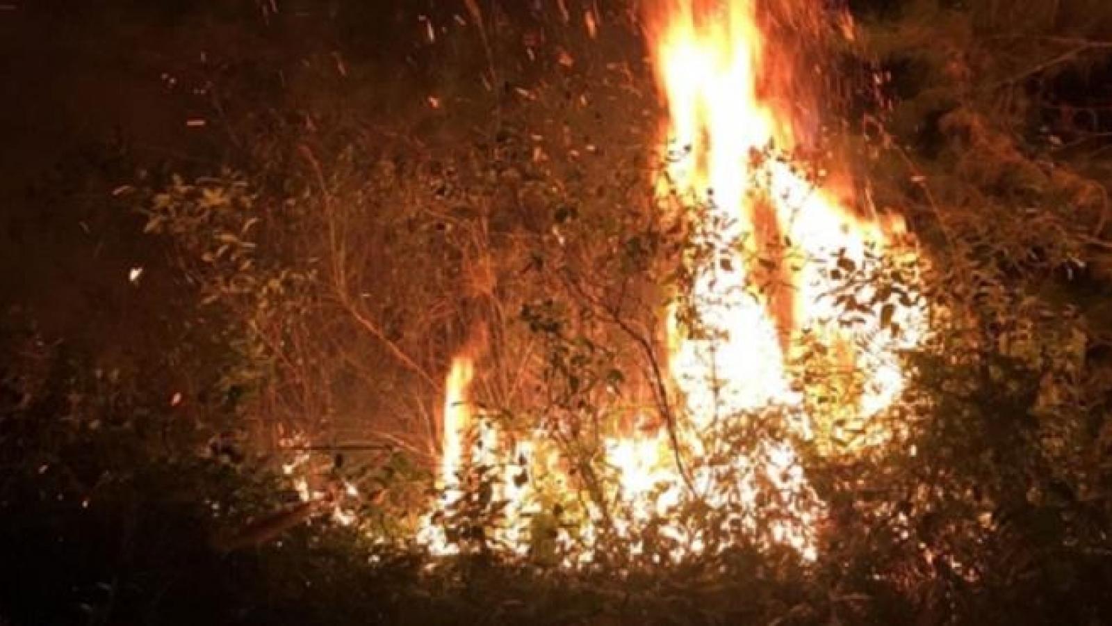 700 người được huy động dập tắt cháy rừng ở Sóc Sơn