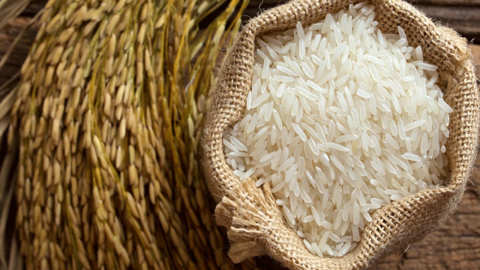 Bangkok Post highlights prudent Vietnamese rice strategy