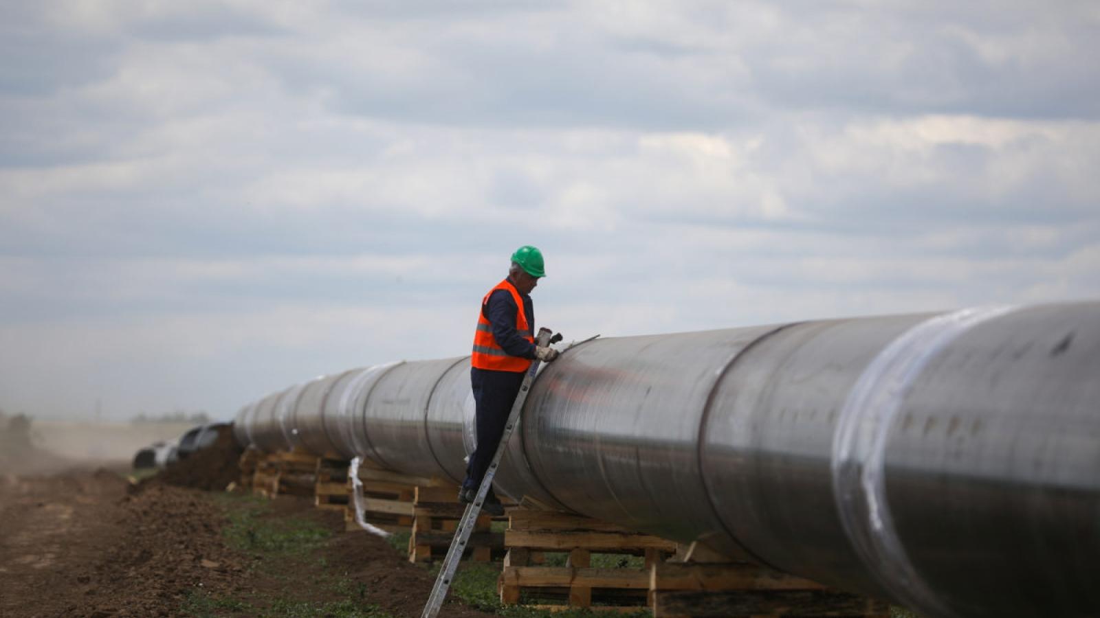 Serbia mở rộng đường dẫn khí đốt của Nga