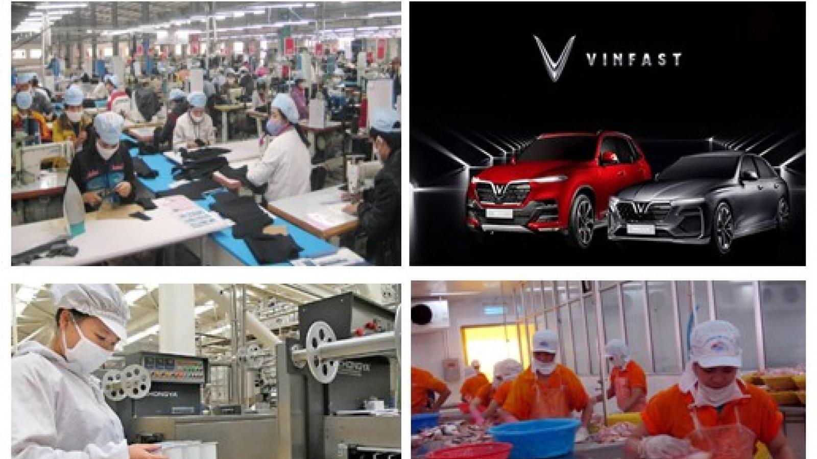 Kinh tế tư nhân nổi lên như một trong những động lực quan trọng của nền kinh tế