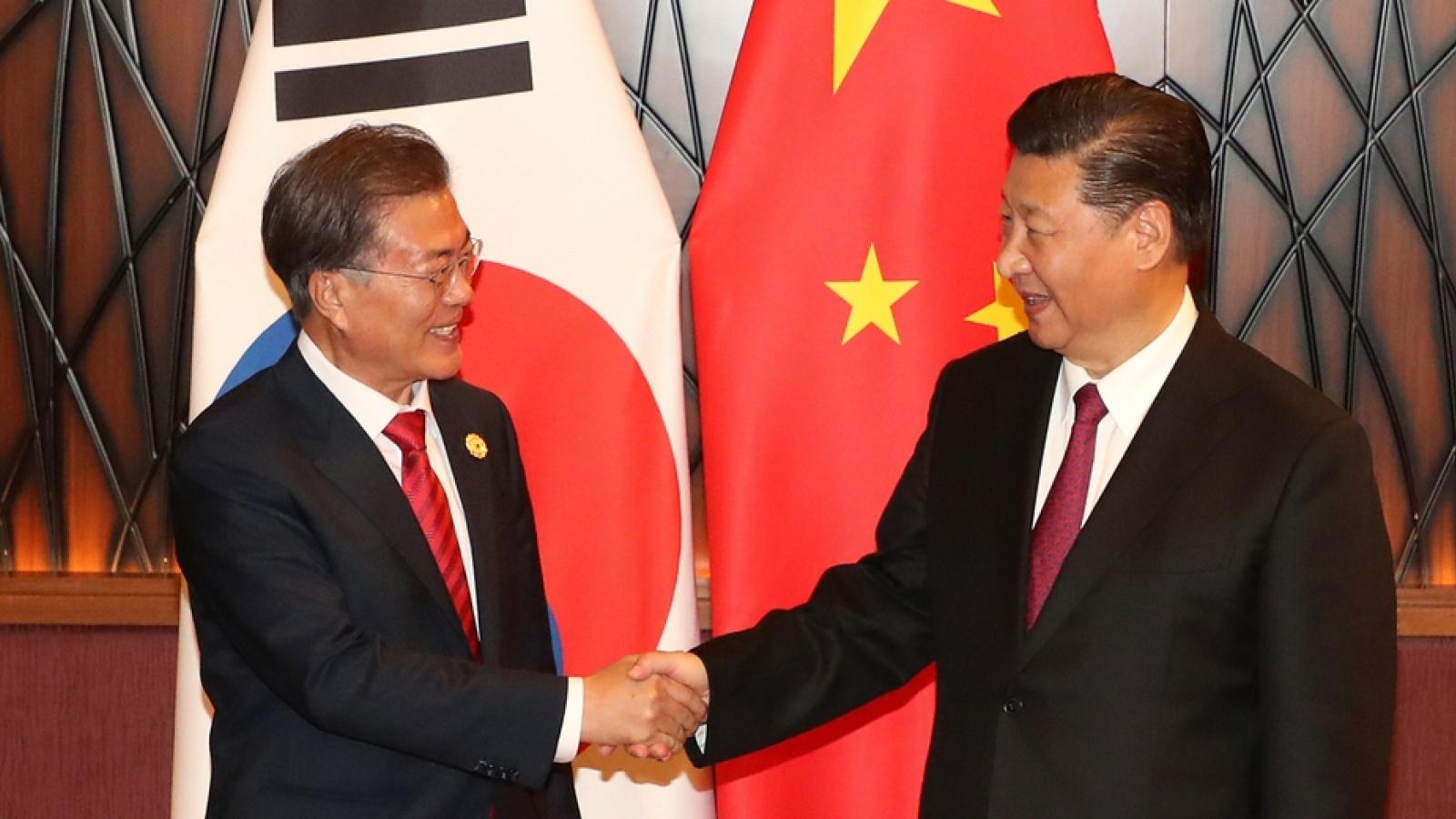 Chủ tịch Trung Quốc hy vọng sớm có chuyến thăm tới Hàn Quốc