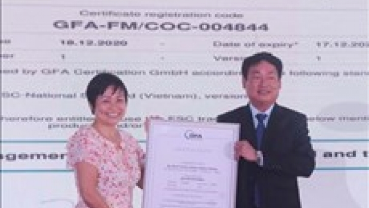 Binh Dinh: nearly 4,200 ha of forests certificated by FSC