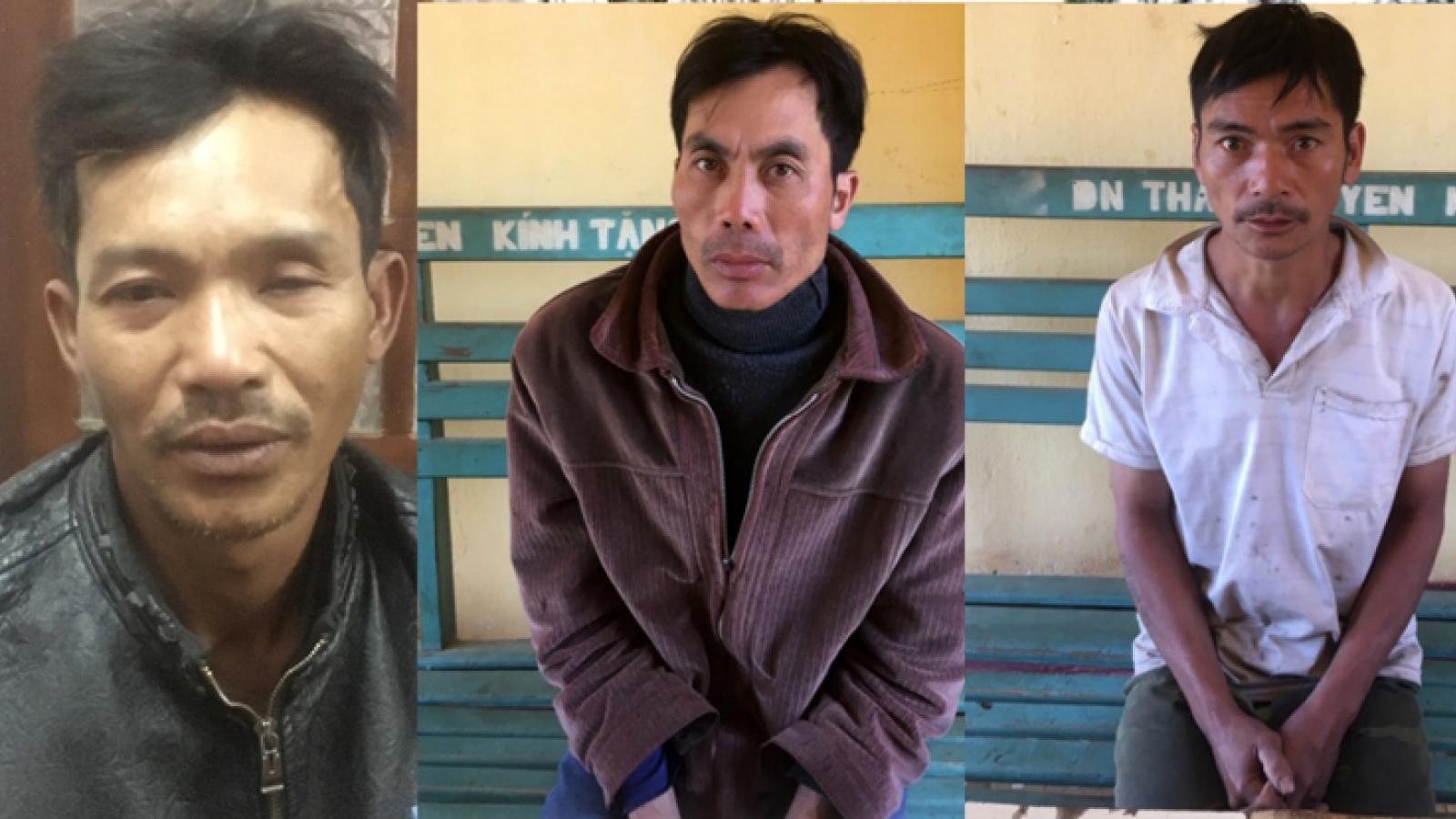 3 đối tượng phá rừng tại Lâm Đồng bị bắt