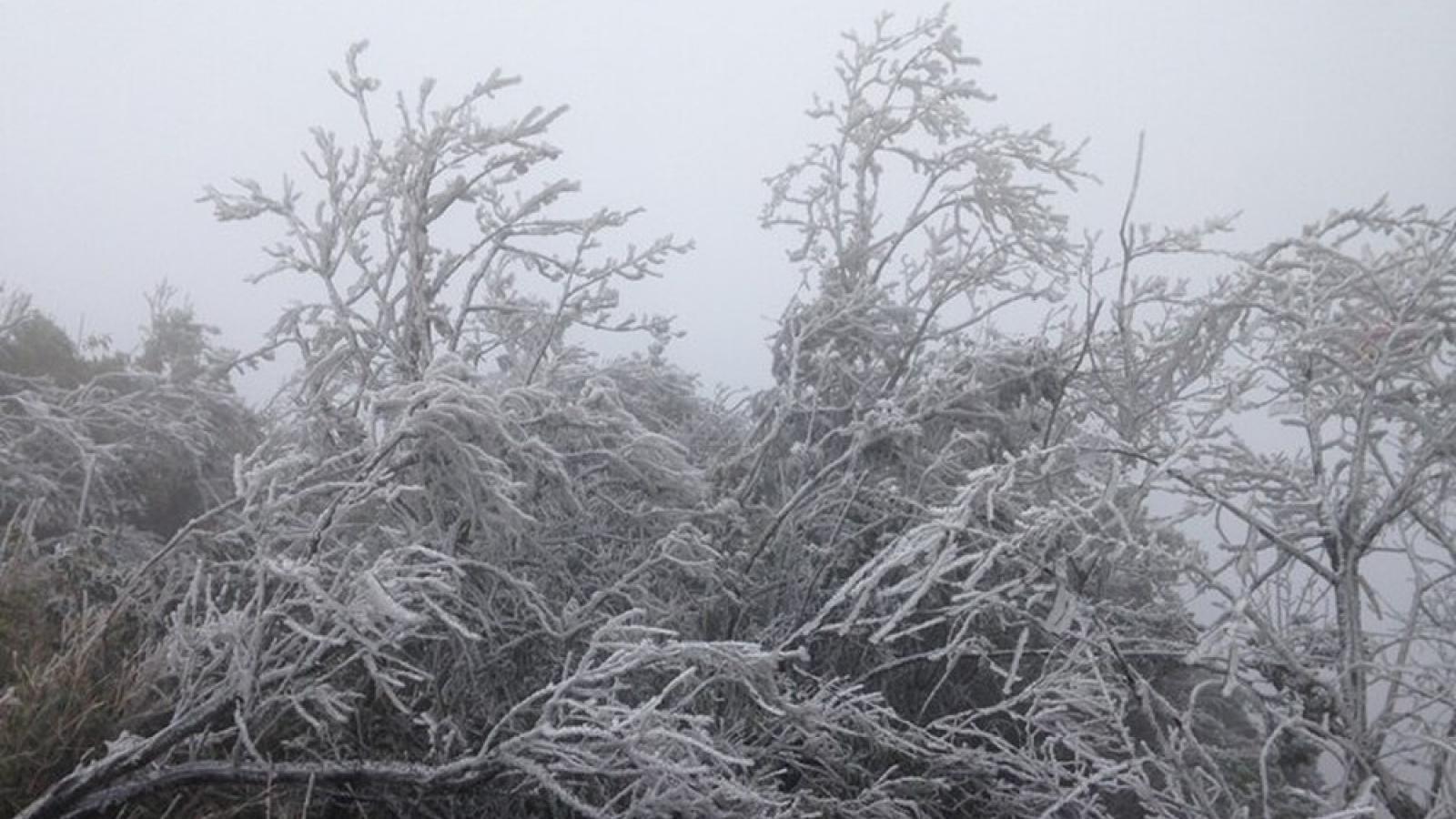 Không khí lạnh dồn dập tăng cường, rét đậm rét hại bao trùm miền Bắc đến giữa tháng 1