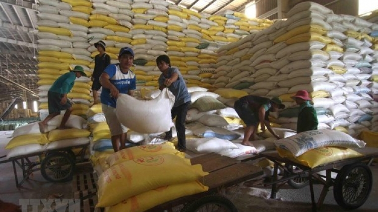 Vietnam to export 1,600 tonnes of rice at high price to Singapore, Malaysia