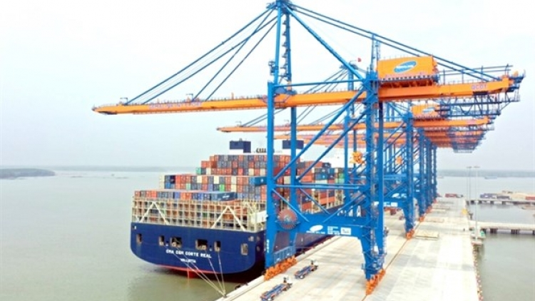 Shipping industry needs State support to develop: ministry