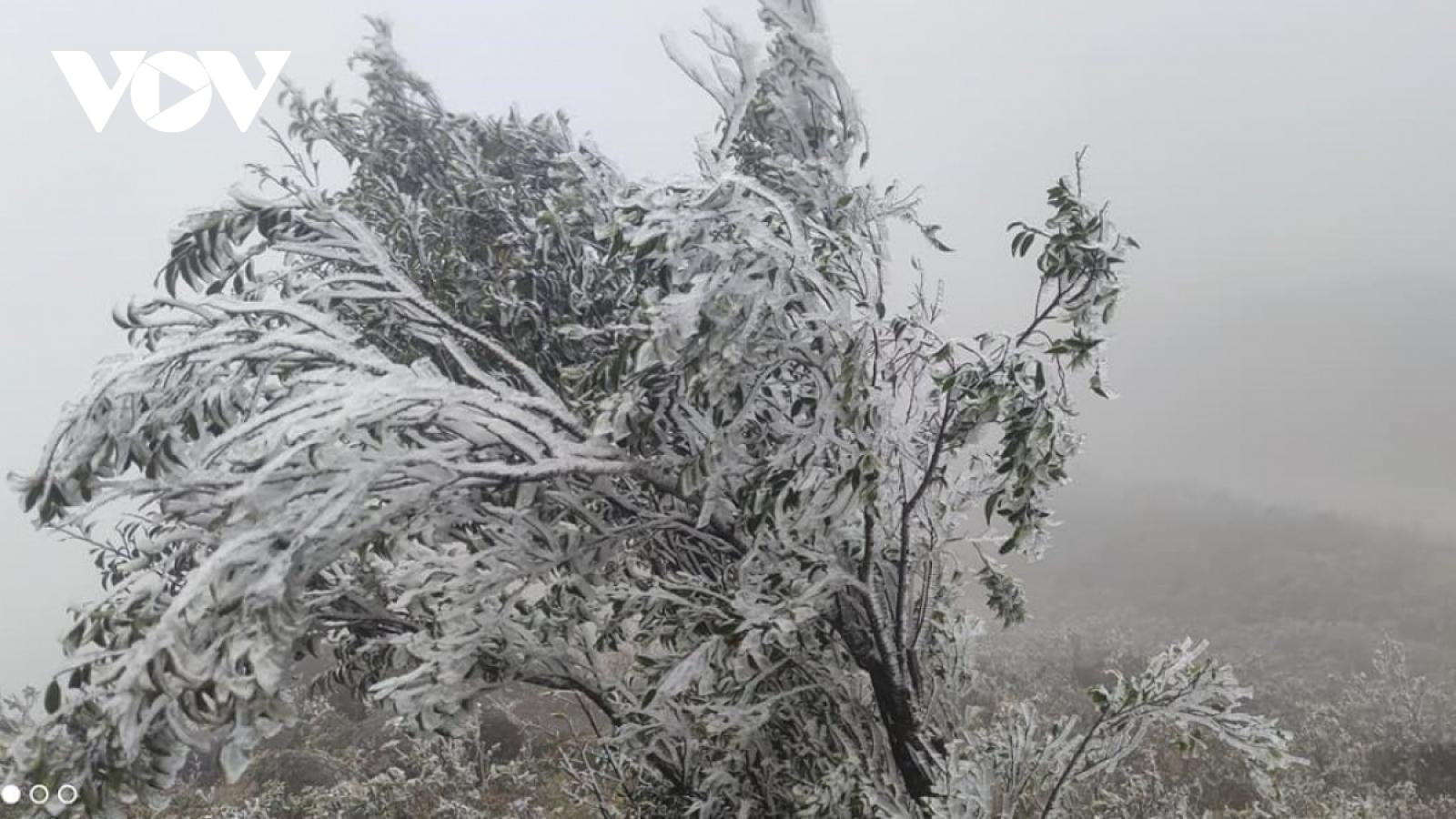 Dự báo thời tiết hôm nay: Vùng núi cao có khả năng xảy ra băng giá, mưa tuyết