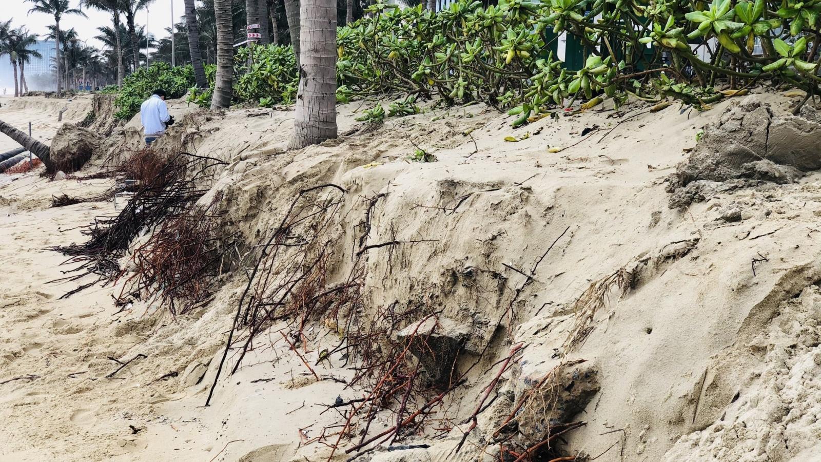 Đà Nẵng thông tin về việc bờ biển liên tục sạt lở