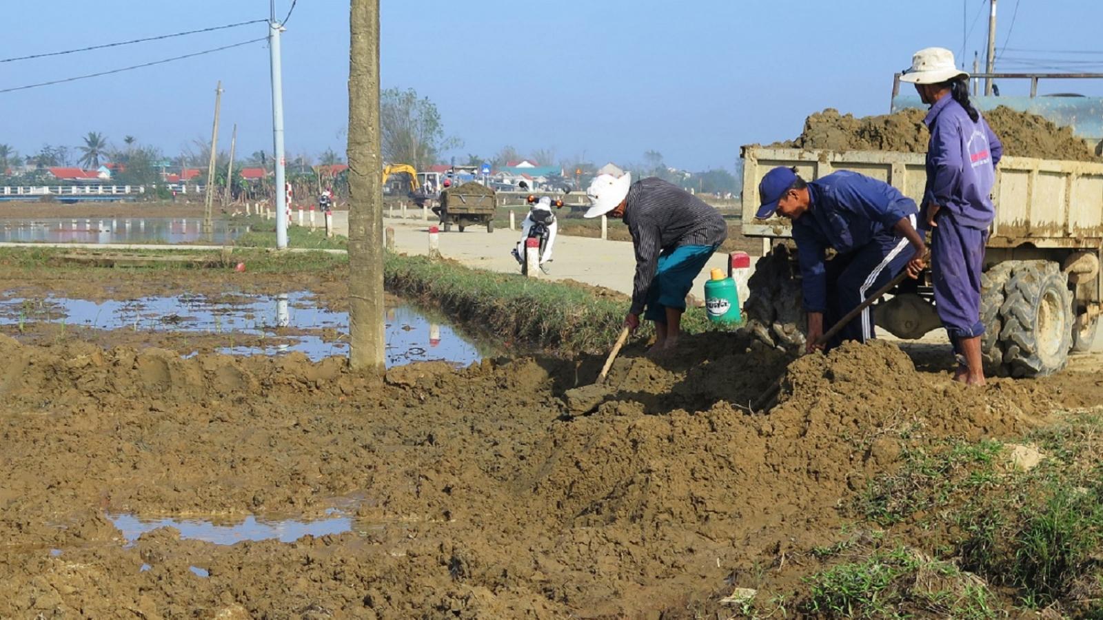 Thừa Thiên Huế tập trung hỗ trợ nông dân sản xuất vụ Đông Xuân