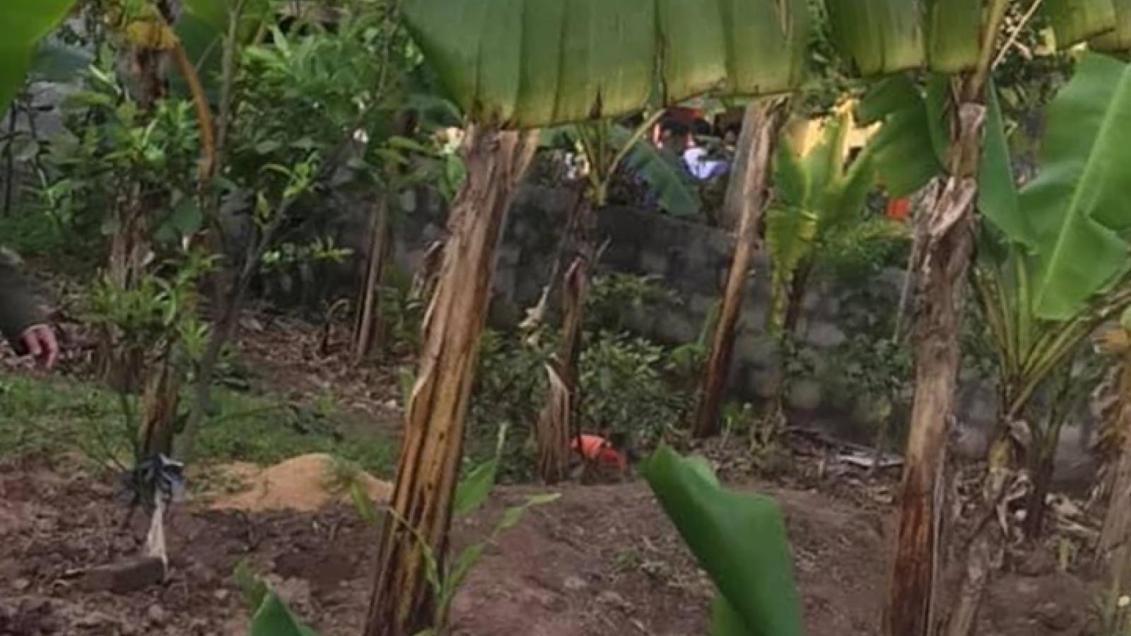 Nữ sinh lớp 10 tử vong bất thường tại vườn chuối ở Hà Nam