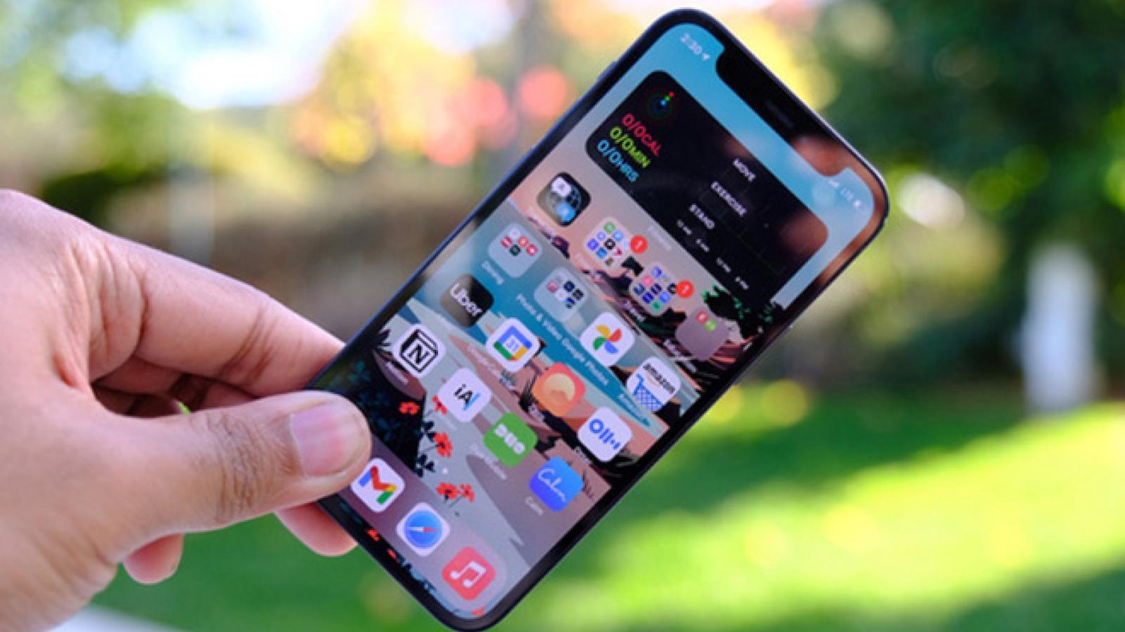 Sẽ không có một mẫu iPhone SE mới nào vào năm nay?