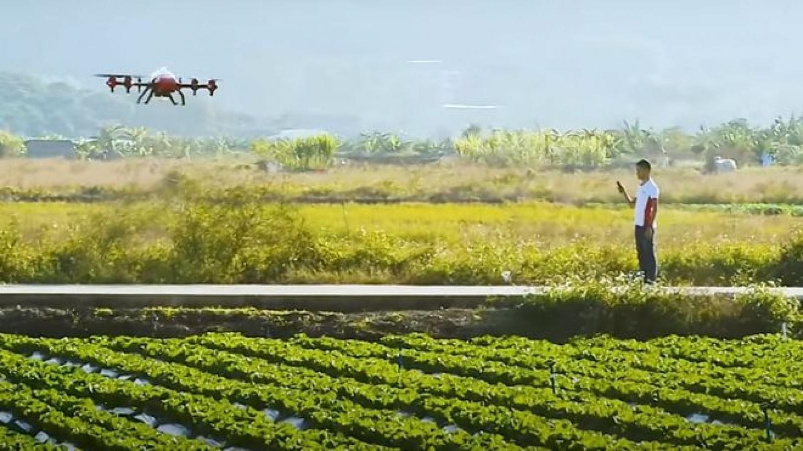 Trung Quốc kêu gọi nhân tài công nghệ về quê phát triển nông thôn