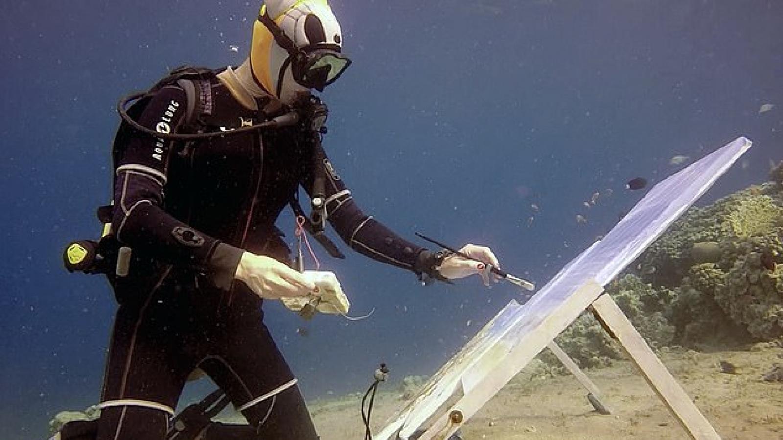 Độc đáo nữ hoạ sĩ người Nga vẽ tranh dưới đáy Biển Đỏ