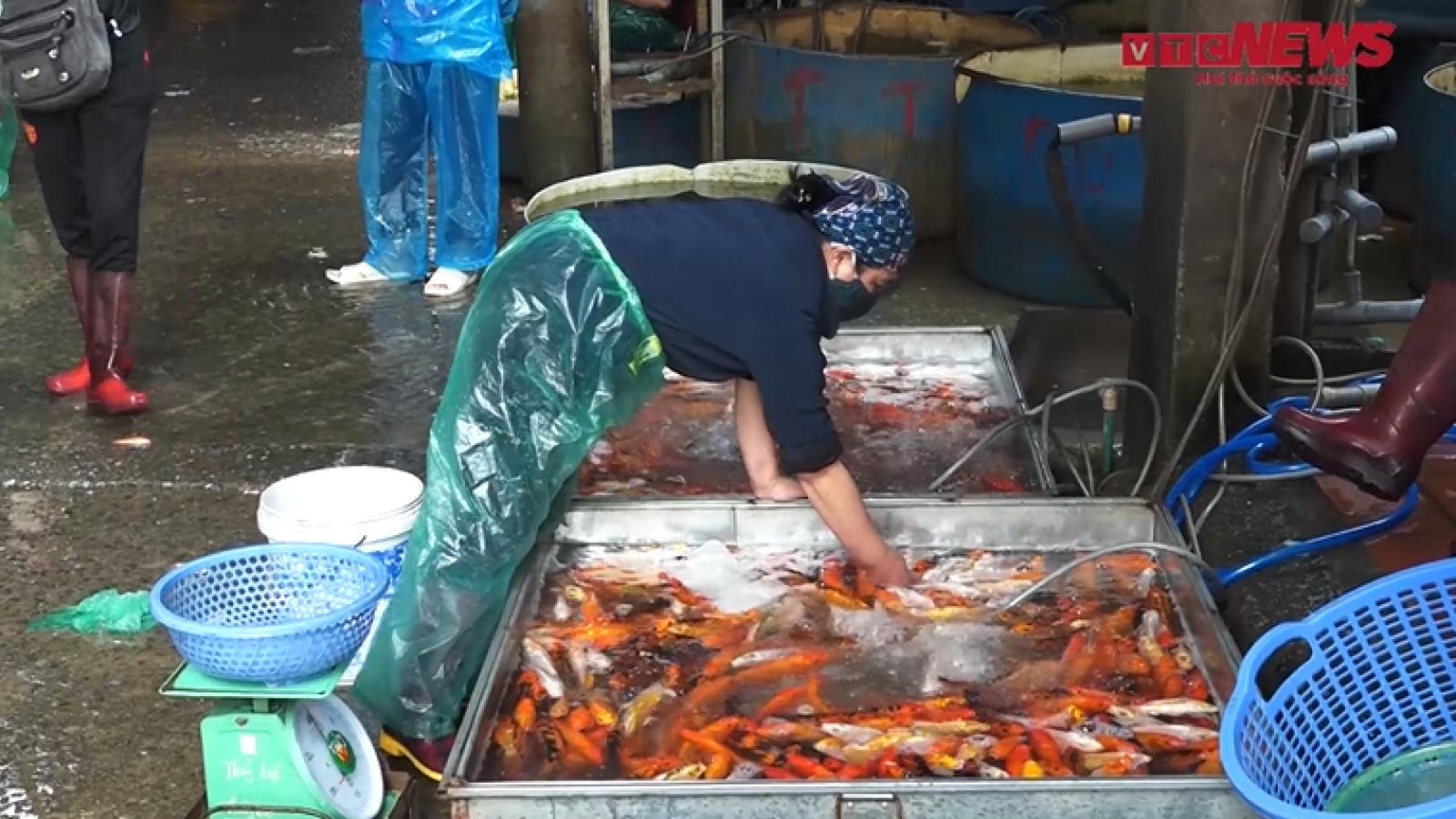 Tấp nập người mua bán tại chợ cá lớn nhất Hà Nội trước ngày ông Công ông Táo