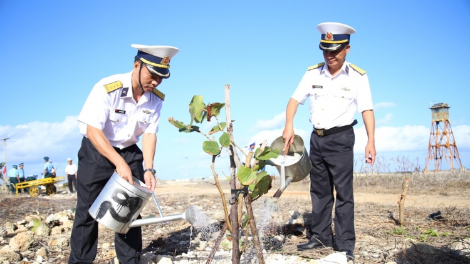 Từ đất liền đến đảo xa hưởng ứng Tết trồng cây đầu năm Tân Sửu