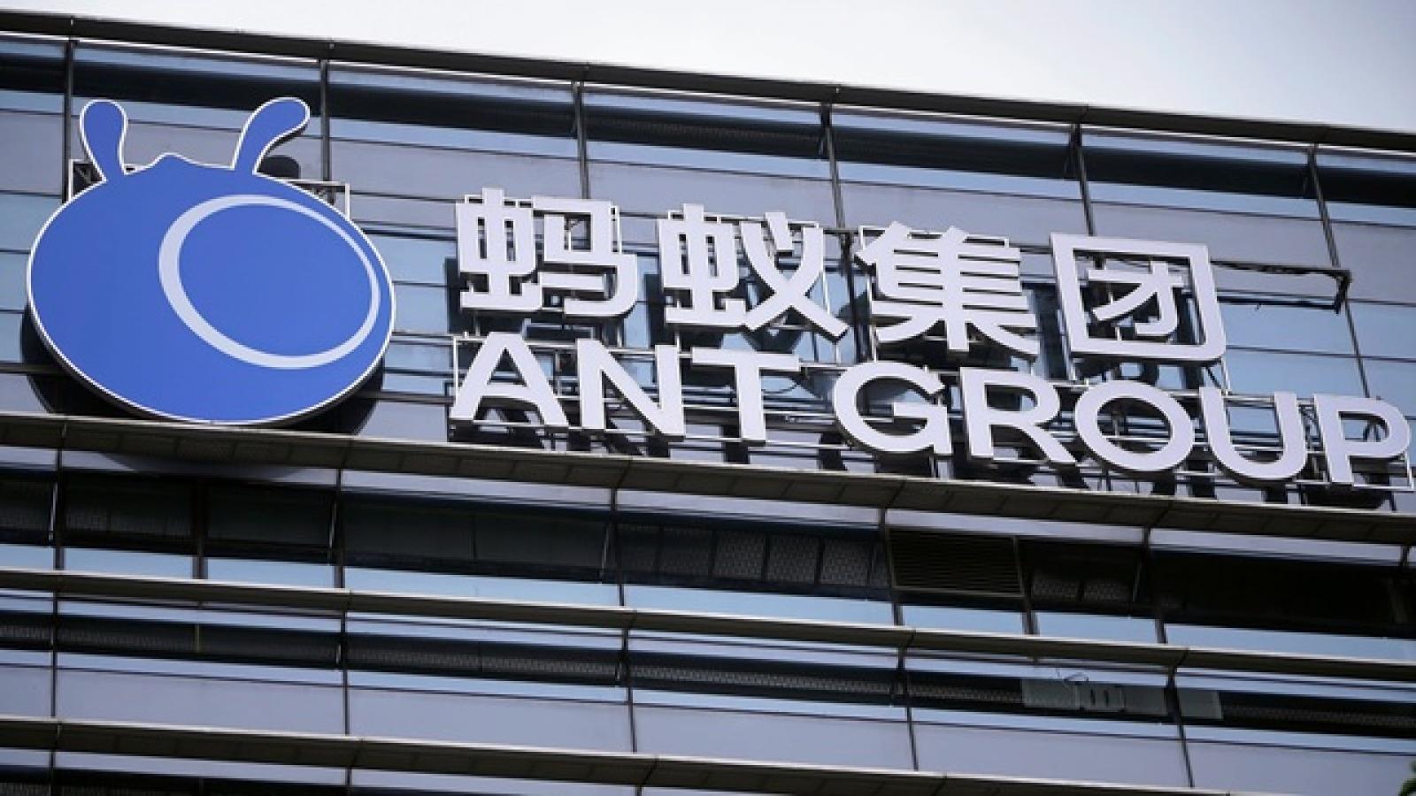 """Công ty tài chính của Jack Ma thoát """"cửa tử"""", tính chuyện IPO lại"""