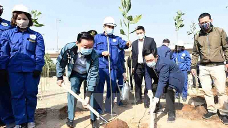 Hanoi launches tree-planting festival on New Year of Ox