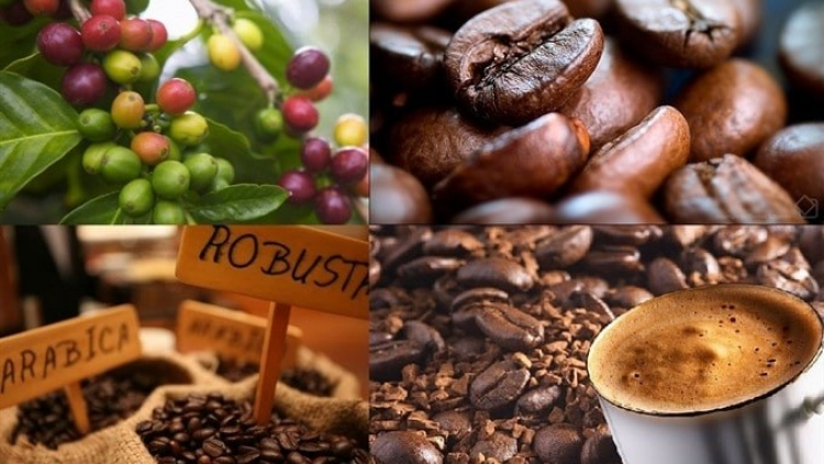 Coffee industry seeks to weather COVID-19 crisis
