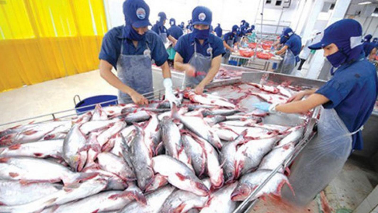 Cambodia lifts ban on catfish imports from Vietnam