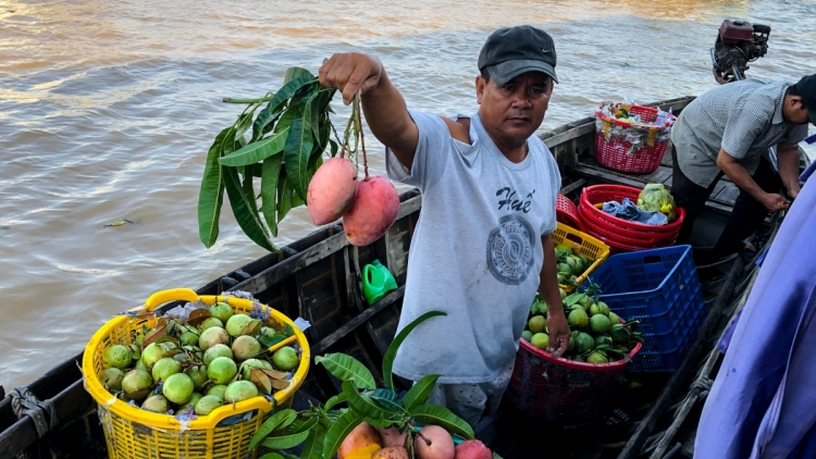 Can Tho deploys green tourism projects at Cai Rang floating market