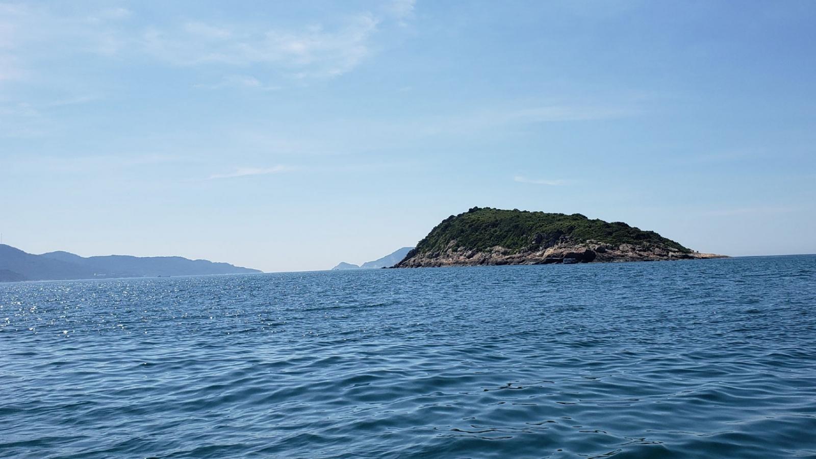 Huy động 20 tàu cá tìm kiếm ngư dân mất tích trên biển Cù Lao Chàm