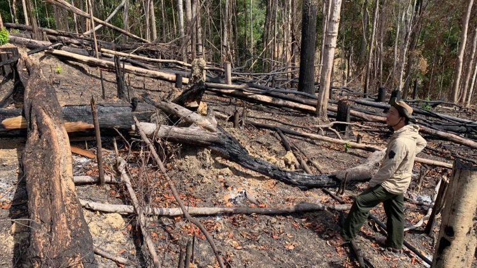 Nóng vấn đề phá rừng, đầu nậu lừa đảo buôn bán đất rừng trái phép tại Đắk Lắk