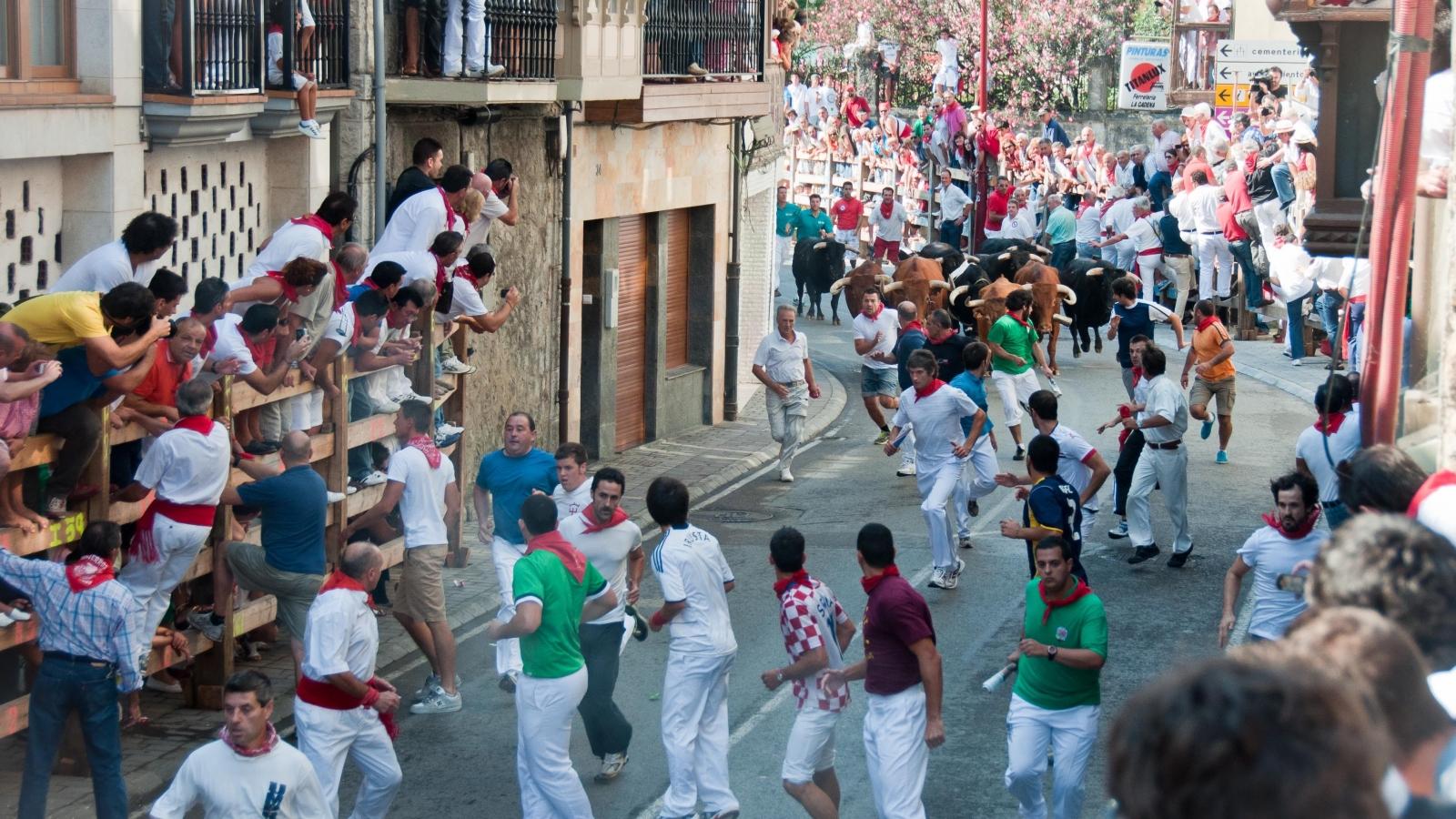 Tây Ban Nha hủy tổ chức lễ hội đua bò nổi tiếng