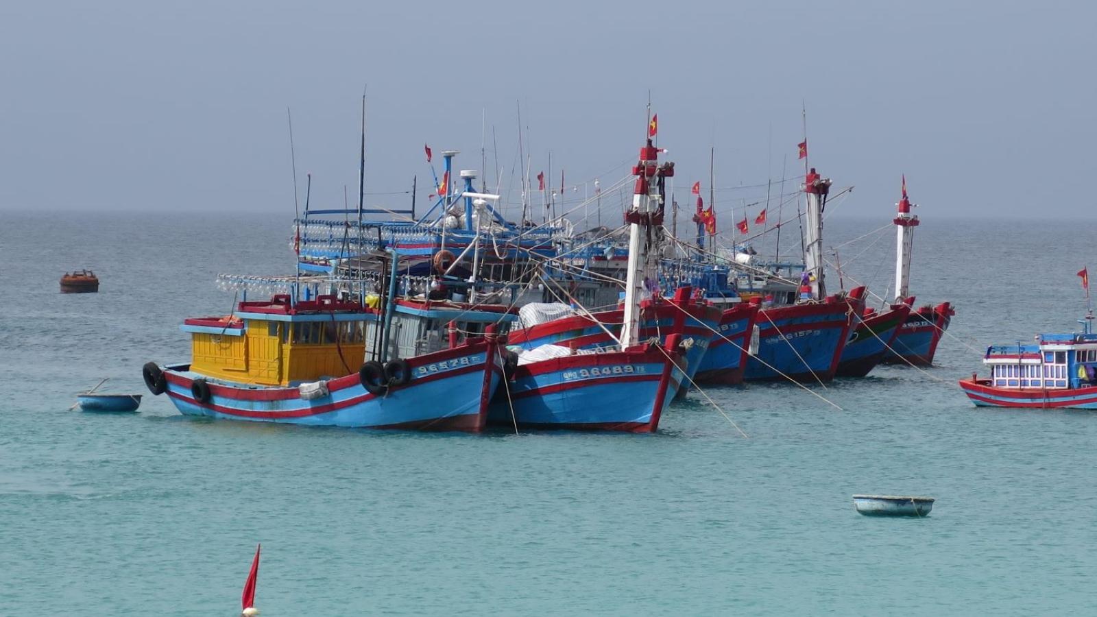 Huyện đảo Lý Sơn dừng hàng loạt hoạt động đầu Năm mới