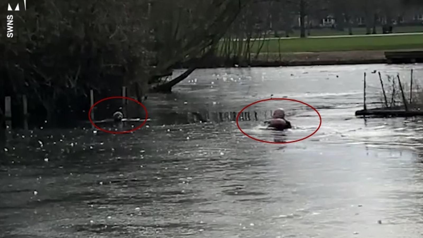 Video: Chó con bị kẹt trong hồ nước lạnh được người đàn ông lao xuống cứu