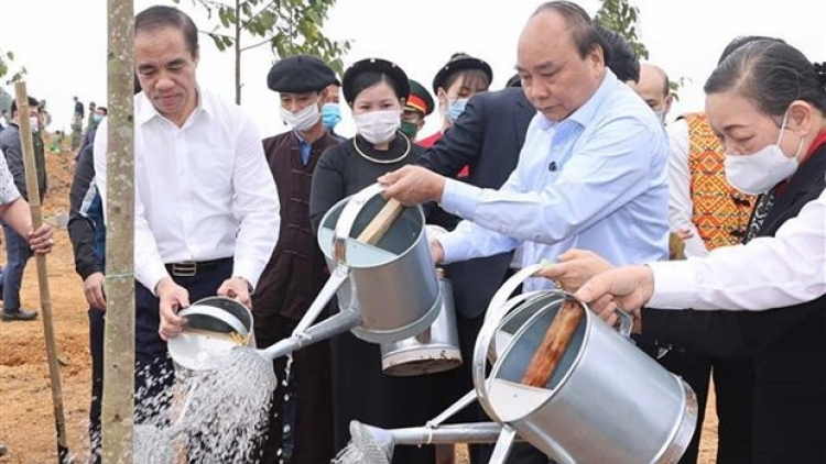 Prime Minister launches tree planting campaign in Tuyen Quang province