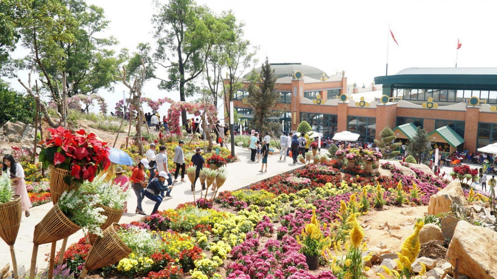 Tây Ninh không tổ chức bắn pháo hoa đêm Giao thừa