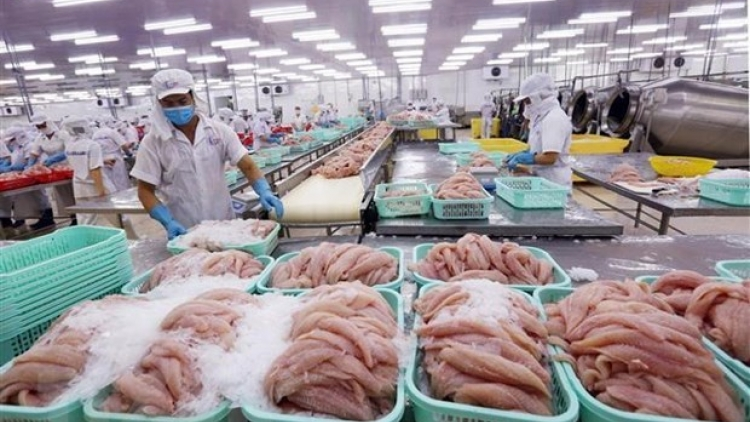 More trade remedy probes predicted for Vietnamese enterprises this year