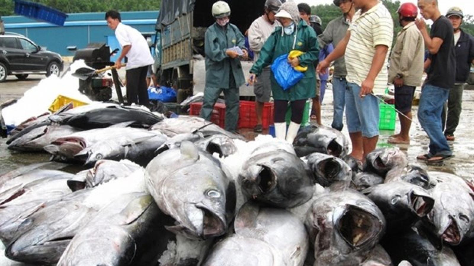 Vietnam's tuna exports to US increase