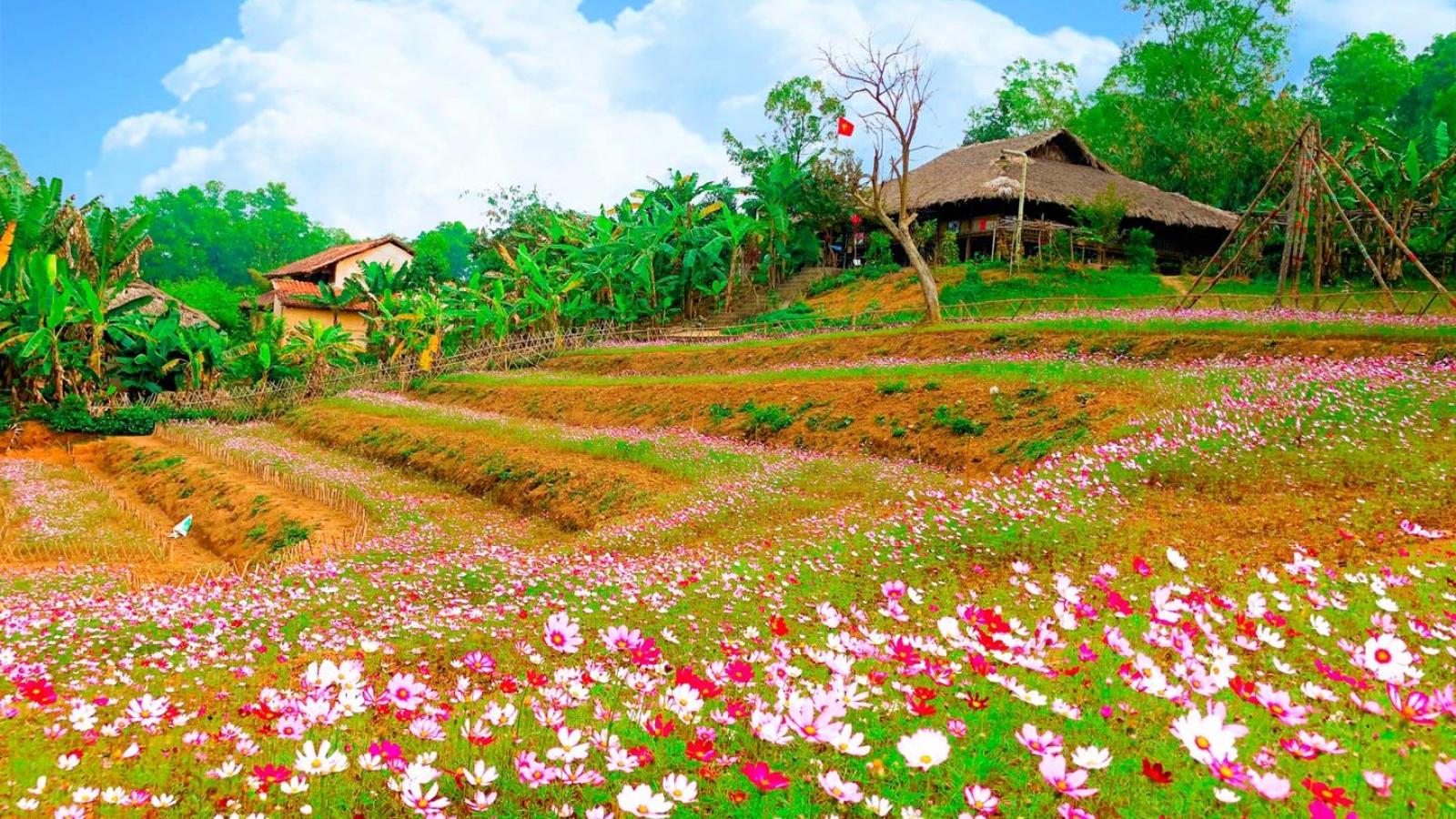 Đặc sắc các hoạt động đón xuân tại Làng Văn hóa - Du lịch các dân tộc Việt Nam