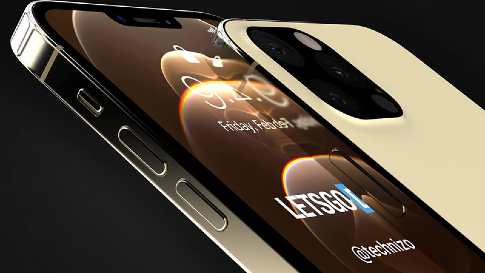 Toàn bộ thành viên iPhone 13 đều có Touch ID dưới màn hình
