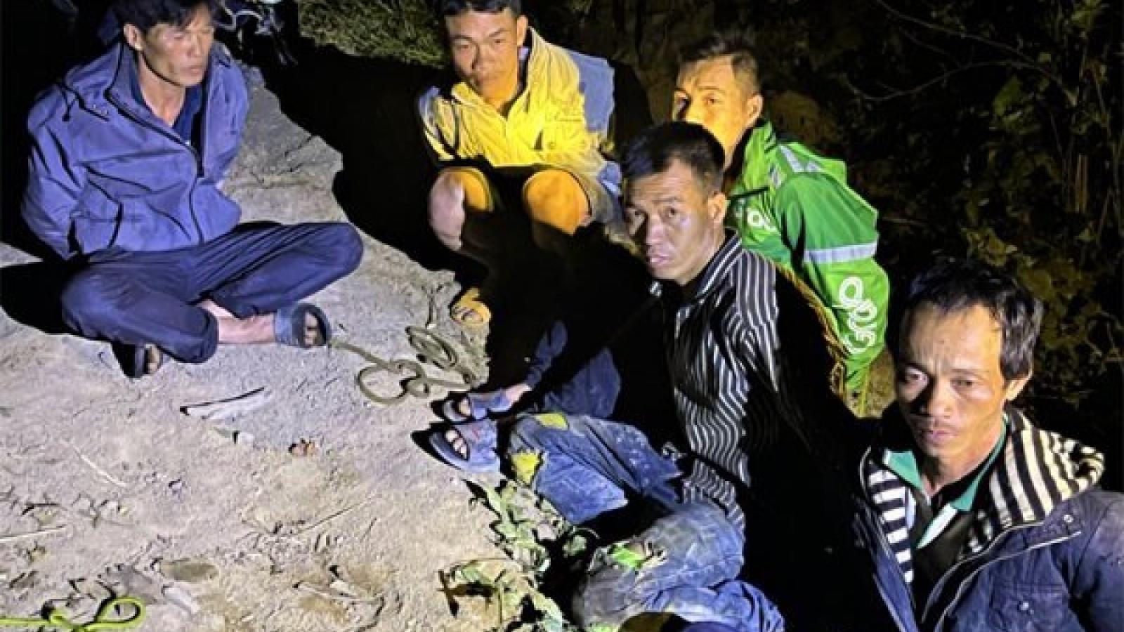 Thêm một vụ phá rừng quy mô lớn tại Krông Bông – Đắk Lắk