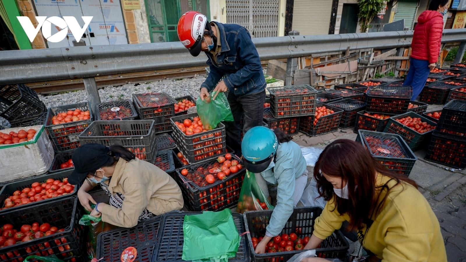 Xúc tiến tiêu thụ sản phẩm nông sản Hải Dương và một số địa phương