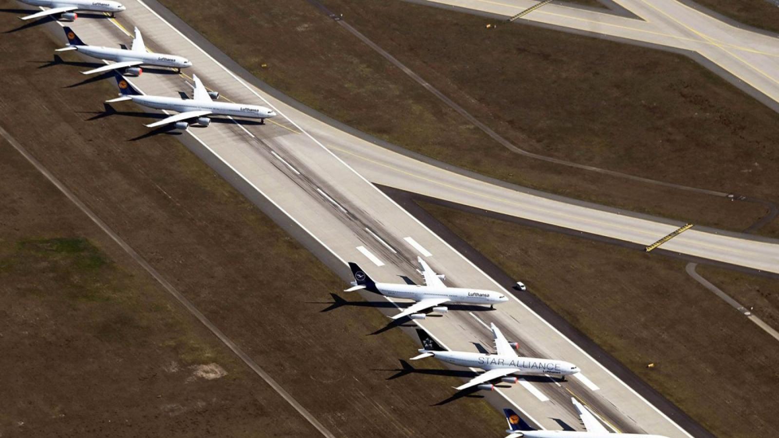 """IATA: Hàng không toàn cầu phải """"đốt"""" thêm gần 100 tỷ USD trong năm nay"""