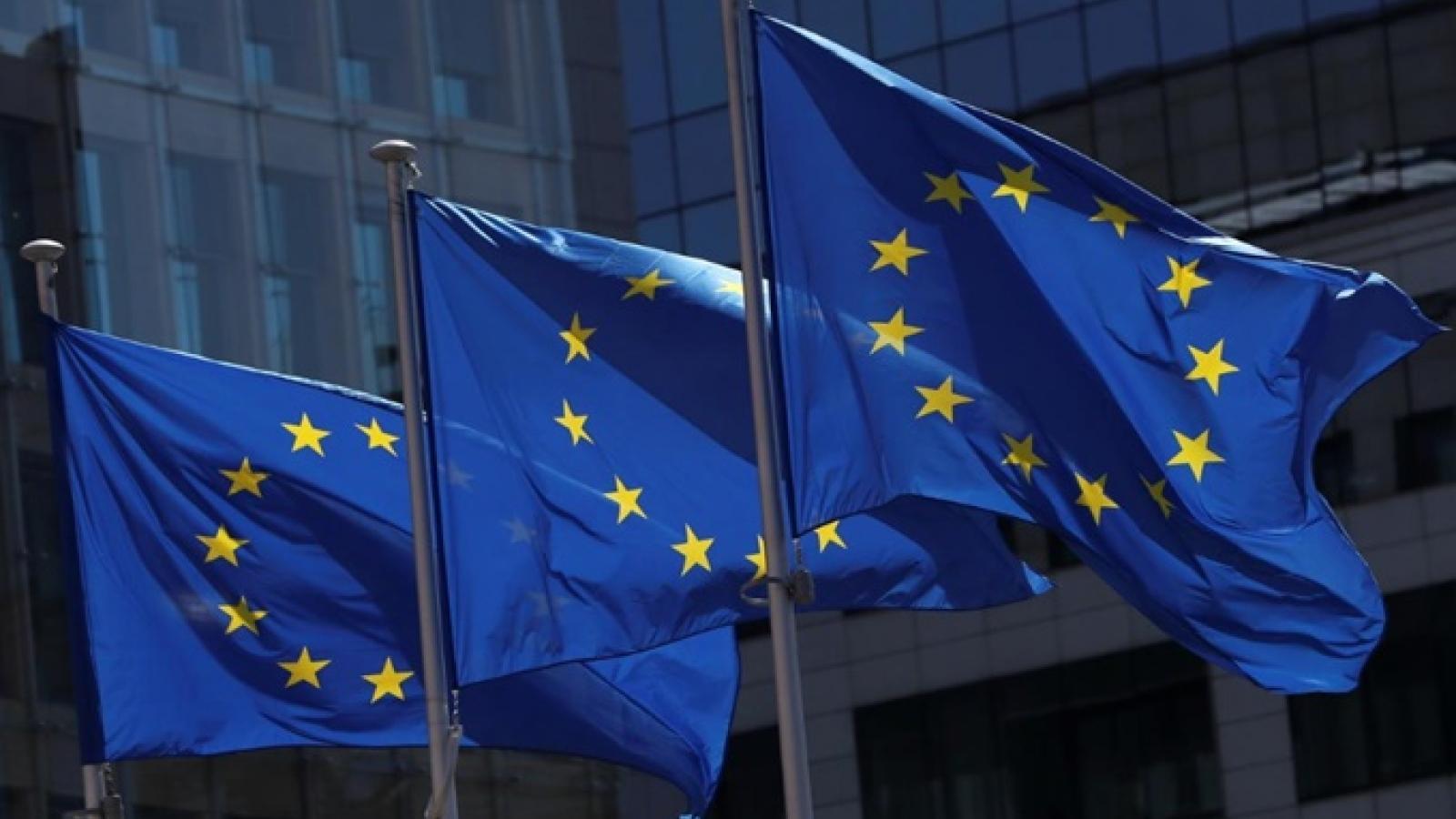 Vaccine phủ bóng Hội nghị thượng đỉnh EU trước nguy cơ làn sóng Covid-19 thứ ba