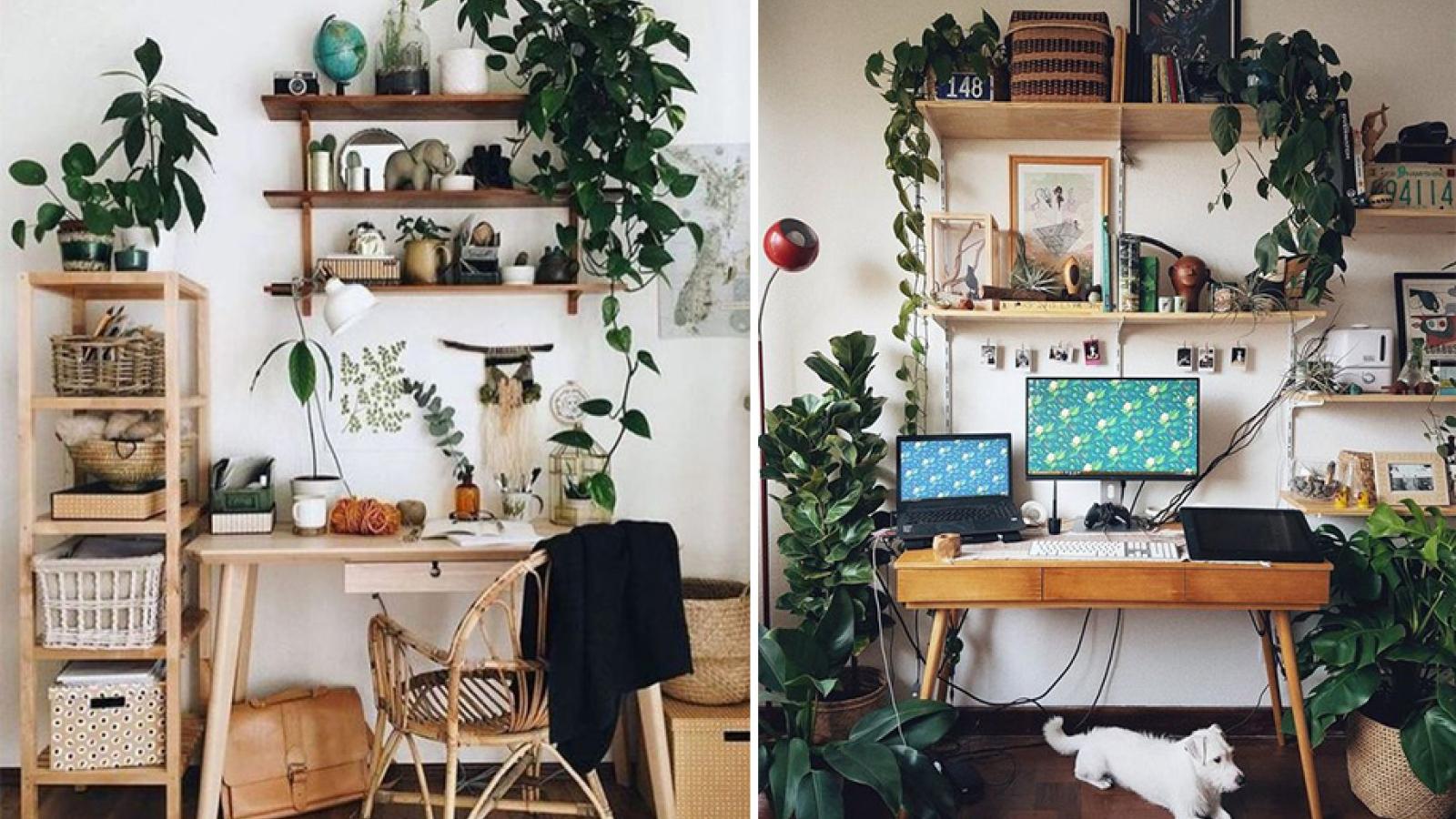Ý tưởng trang trí giúp bàn làm việc của bạn hòa vào thiên nhiên