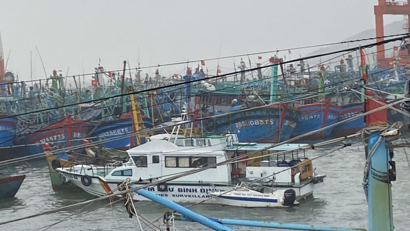 Bình Định: Liên lạc được với tàu cá cùng 12 ngư dân trên biển