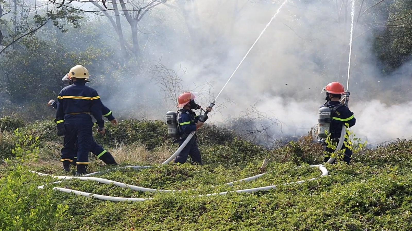 Vườn chim Bạc Liêu ở mức cảnh báo cháy cấp 5, cấp cực kỳ nguy hiểm