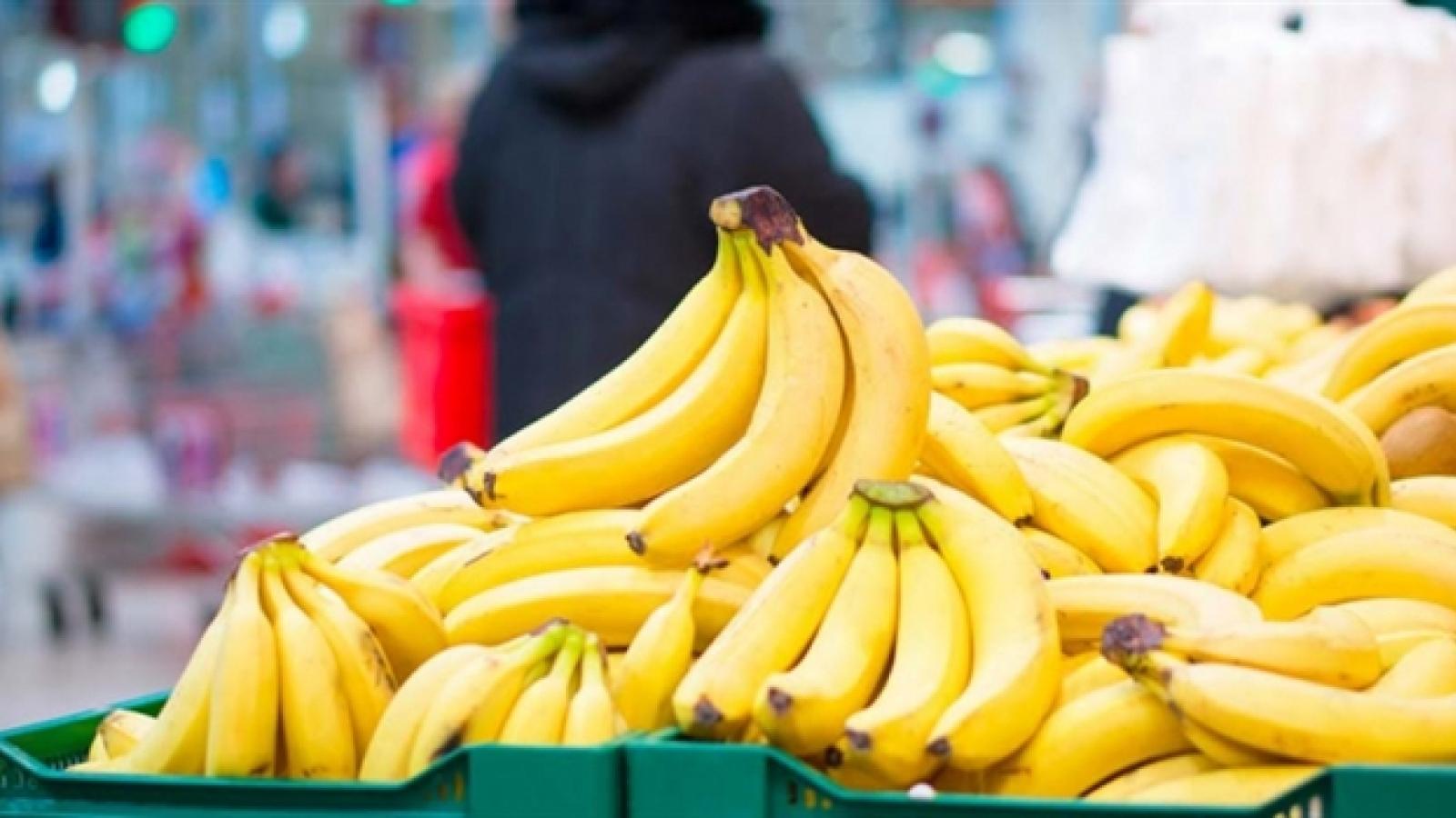 Chuối Việt Nam nhập khẩu vào EU giá cao ngất ngưởng