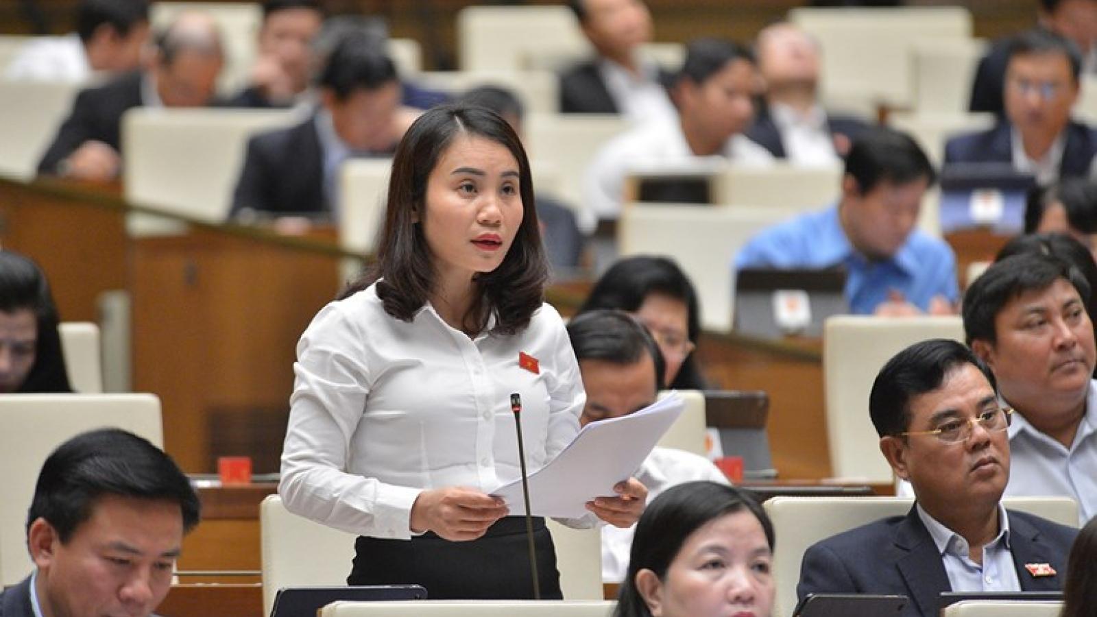 """""""Hệ thống pháp luật của Việt Nam liên tục được phát triển"""""""