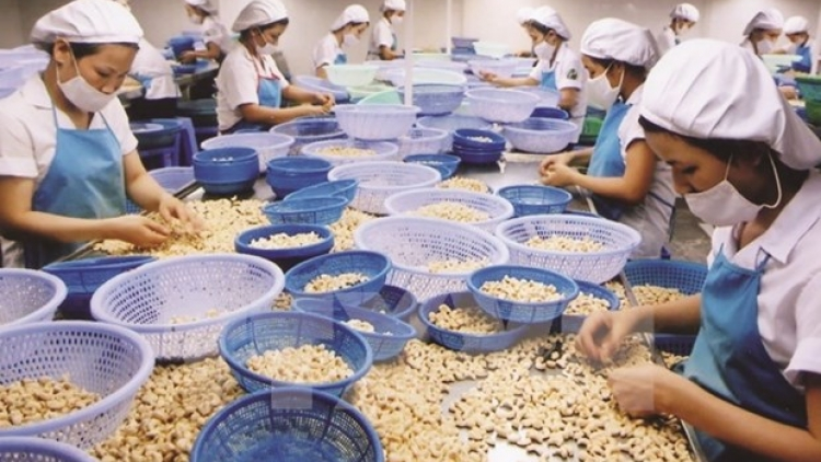 US emerges as largest consumer of Vietnamese farm produce