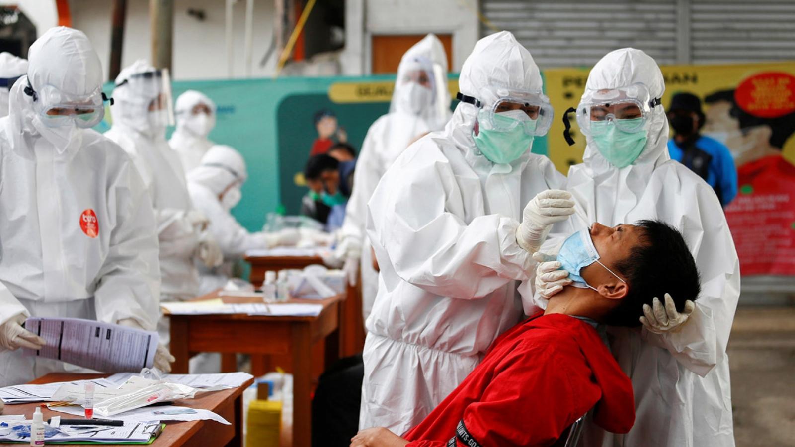 Tỷ lệ tử vong do Covid-19 tăng ở Indonesia, Séc ghi nhận ít nhất 1.400 ca tái mắc