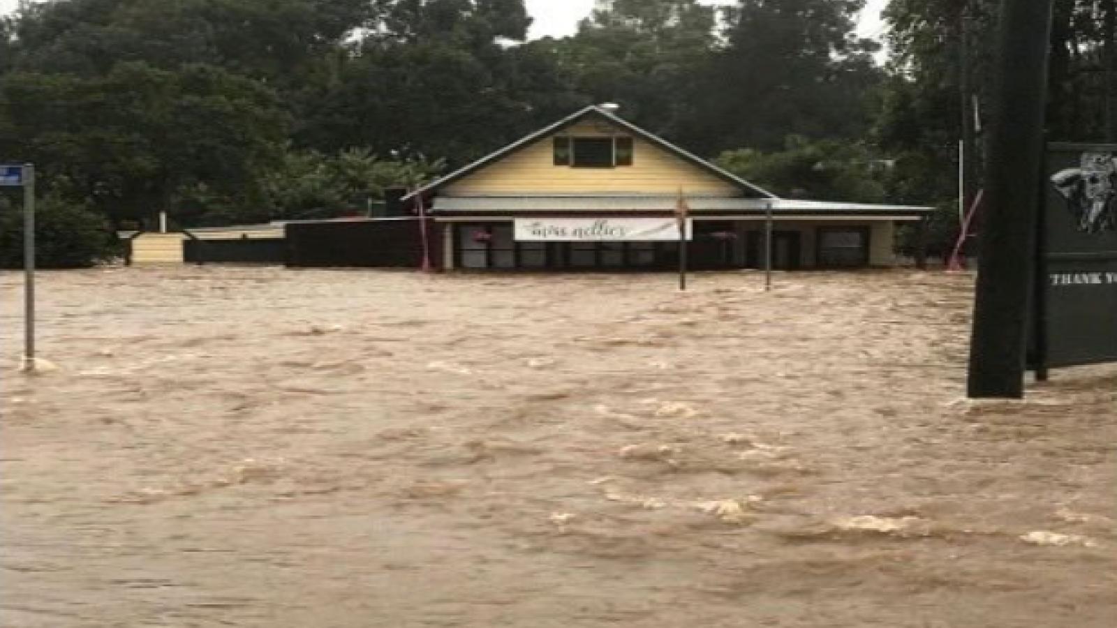 Mưa lớn gây ngập lụt nhiều nơi ở khu vực phía Đông của Australia