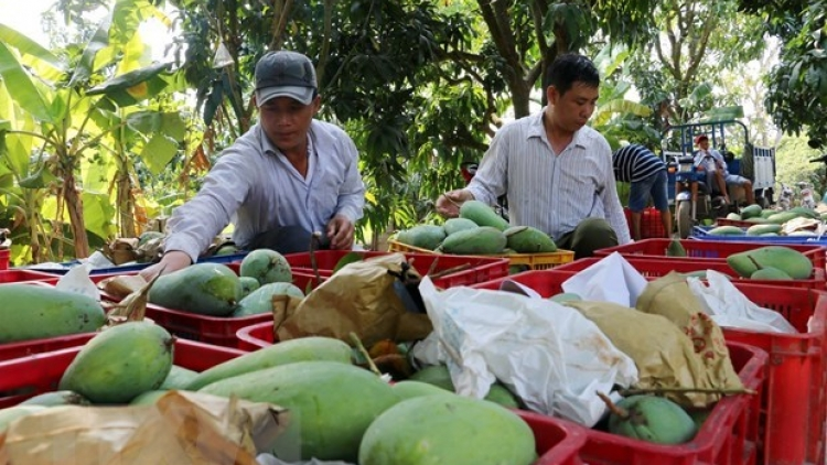 Trade surplus from agro-forestry-fisheries hit US$1.37 mln in two months