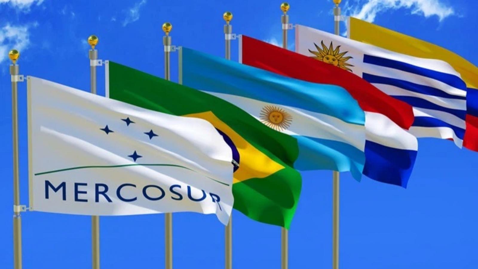 Nhìn lại 30 năm Khối Thị trường chung Nam Mỹ (MERCOSUR)