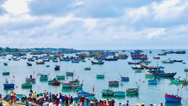 Binh Thuan launches new tourism products to boost visitor numbers
